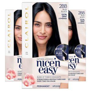Clairol Nice N Easy Permanent Hair Color, 2BB Blue Black-best blue black hair dye