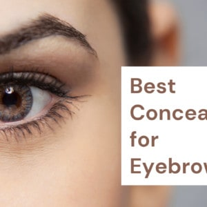 9 Best Concealer for Eyebrows