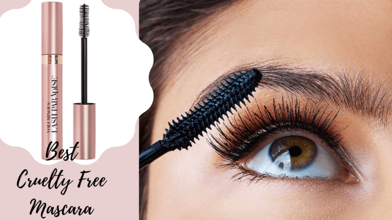 Make Your Eye The Most Attractive With The 15 Best Cruelty Free Mascara